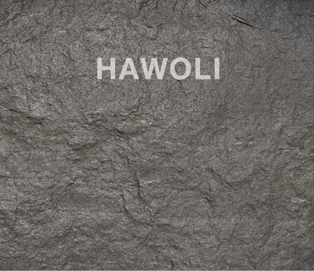 Umschlag_HAWOLI.indd