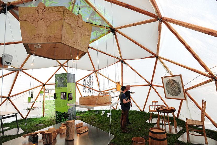 """Projekt """"Ein Baum aus der Göhrde"""" - feierliche Eröffnung mit Abschlussausstellung am Naturum in Göhrde"""